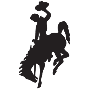 bucking bronco icon